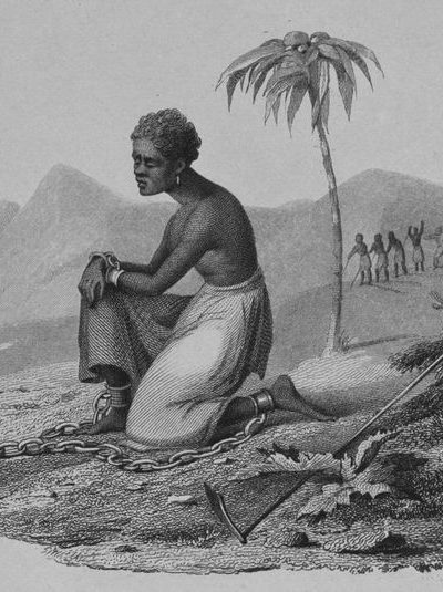 nypl.digitalcollections.510d47da-75a9-a3d9-e040-e00a18064a99.001.w